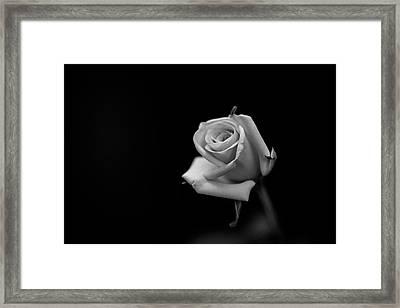 Elegant Framed Print