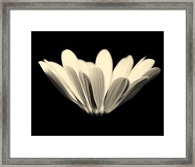 Elegant Framed Print by Julie Lueders