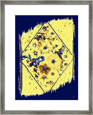 Elegant Petunia Abstract Framed Print by Will Borden