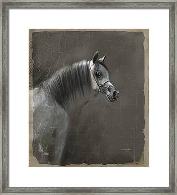 Elegance  Framed Print by Dorota Kudyba