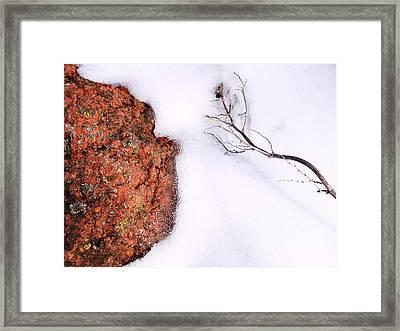 Elemental Framed Print by Tom Druin