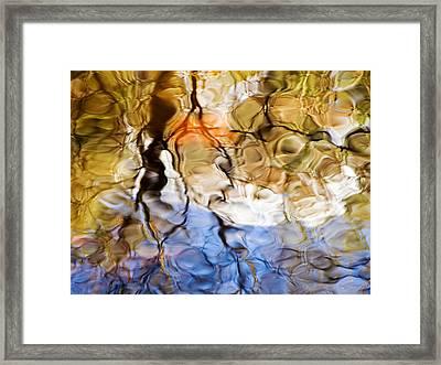 Elementals Framed Print by Joanne Baldaia - Printscapes