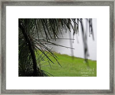 Framed Print featuring the photograph Elements by Greg Patzer
