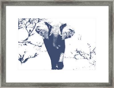 Elephant 3 Framed Print by Joe Hamilton