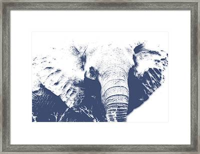Elephant 4 Framed Print by Joe Hamilton