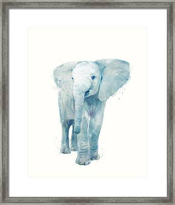 Elephant Framed Print by Amy Hamilton