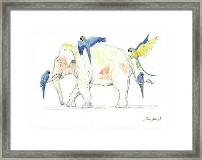 Elephant And Parrots Framed Print by Juan Bosco