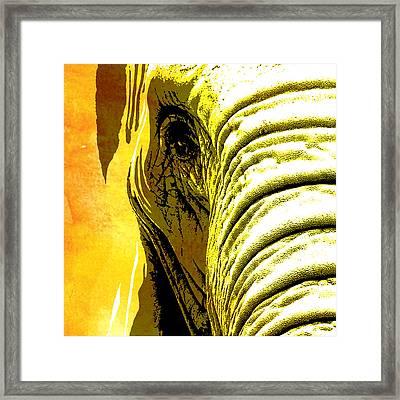 Elephant Animal Decorative Yellow Wall Poster 5 Framed Print
