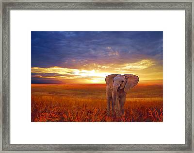 Framed Print featuring the painting Elephant Baby by Valerie Anne Kelly