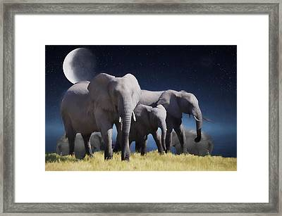 Elephant Bath Time Painting Framed Print by Ericamaxine Price