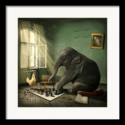 Chess Queen Framed Prints