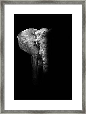 Elephant Framed Print by Deborah Penland