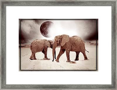 Elephant Drawing Framed Print by EricaMaxine Price