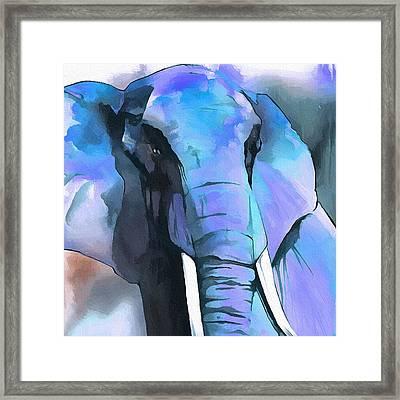 Elephant Face I Framed Print by Ronald Bolokofsky