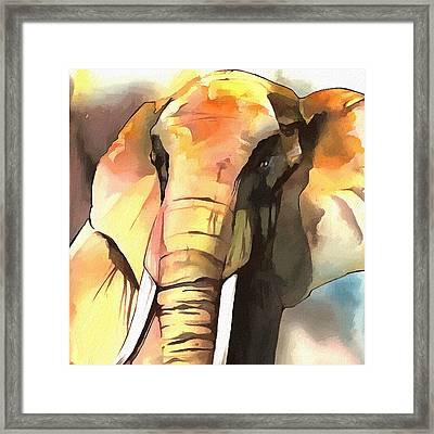 Elephant Face II Framed Print by Ronald Bolokofsky