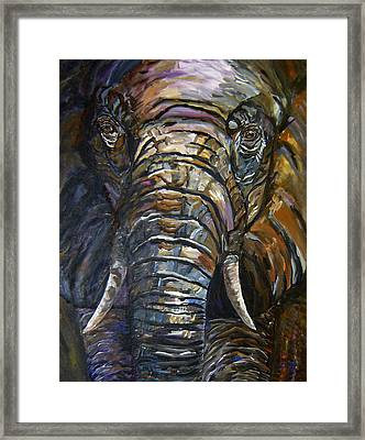 Elephant Faces Of Nature Series Framed Print