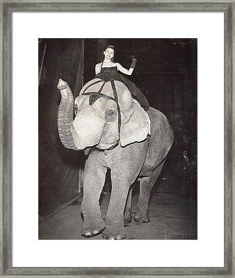 Elephant Girl Framed Print by Judyann Matthews