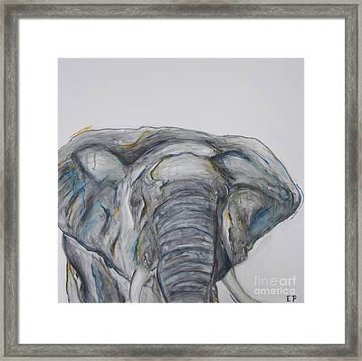 Elephant In Blue And Orange Framed Print