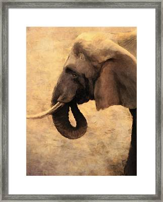 Elephant In The Sunlight Framed Print by Georgiana Romanovna
