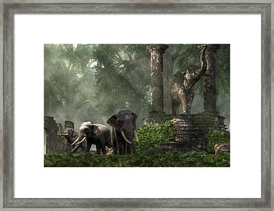 Elephant Kingdom Framed Print by Daniel Eskridge