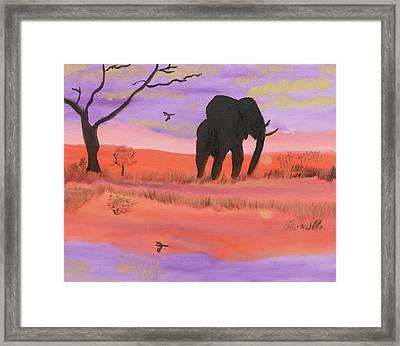 Elephant Spotlight Framed Print
