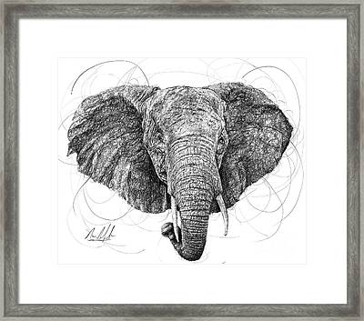 Elephant Framed Print by Michael Volpicelli