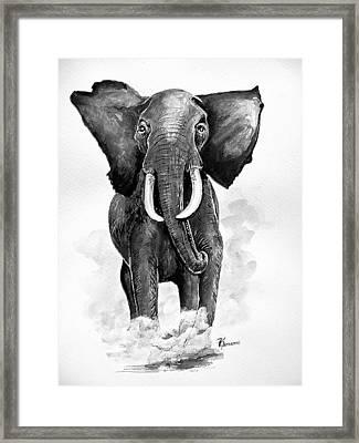 Elephant Framed Print by Paul Sandilands
