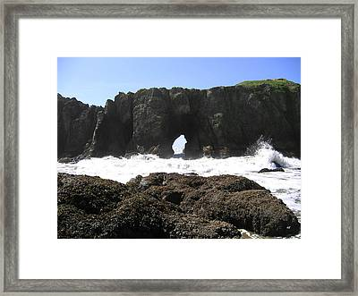 Elephant Rock 2 Framed Print by Will Borden