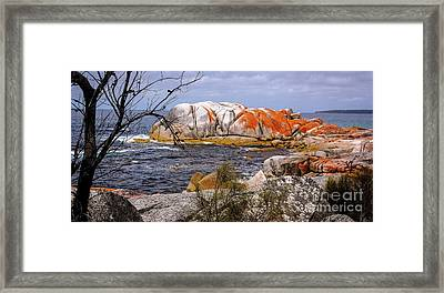 Elephant Rock - Bay Of Fires Framed Print
