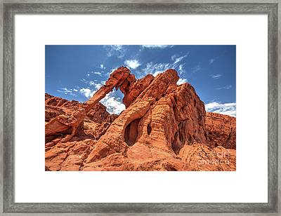 Elephant Rock, Valley Of Fire State Park, Nevada Framed Print