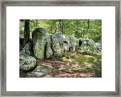 Elephant Rocks Framed Print