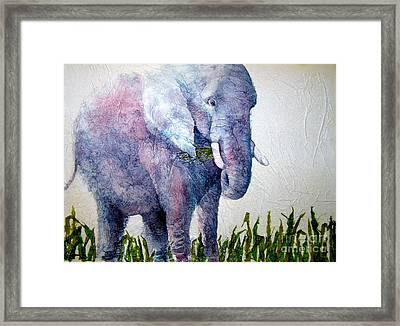 Elephant Sanctuary Framed Print