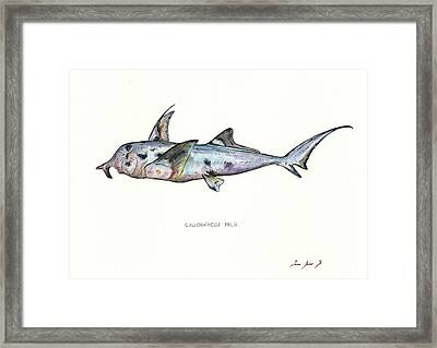 Elephant Shark Framed Print