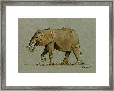 Elephant Watercolor Framed Print