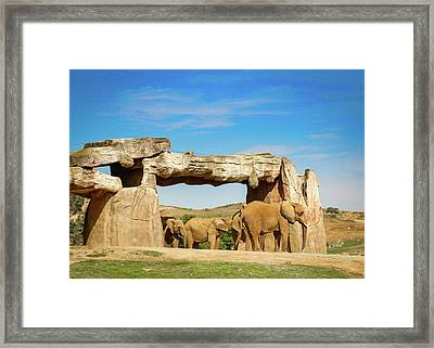Framed Print featuring the photograph Elephants by Alison Frank