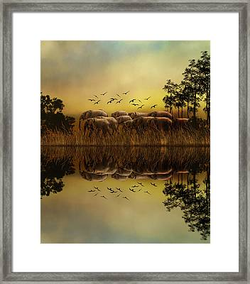 Elephants At Sunset Framed Print