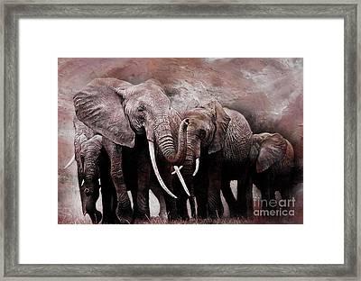 Elephants Group  Framed Print
