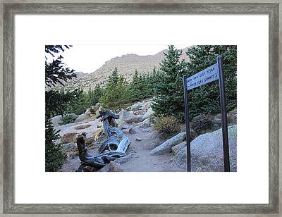 Elevation 11,500 Framed Print
