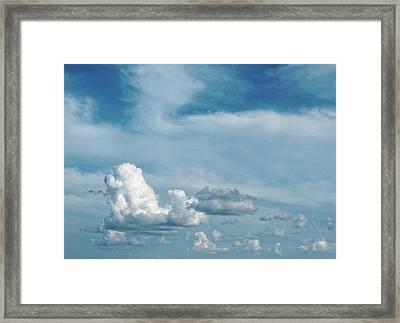 Framed Print featuring the photograph Elevation by Tom Druin