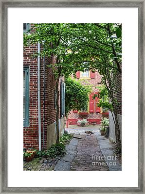 Calico Alley  Framed Print