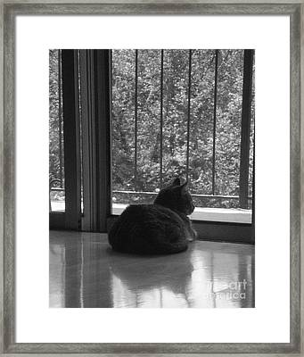 Eliza Framed Print by Utopia Concepts