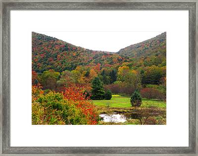 Elk Country Pennsylvania Framed Print