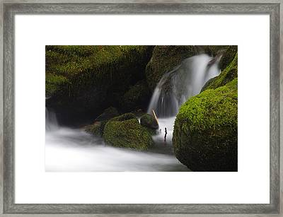Elk Creek Detail 1 Framed Print by Ken Dietz