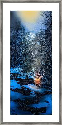 Elk Creek Framed Print