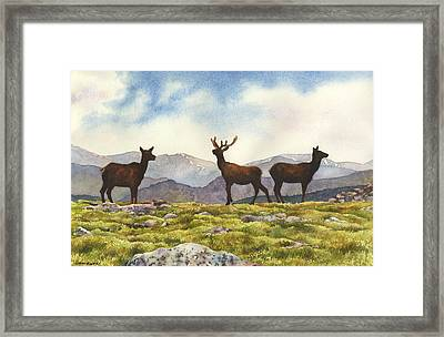Framed Print featuring the painting Elk In The Evening by Anne Gifford