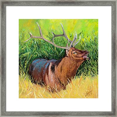 Elk Original Oil Painting On 24x24x1 Inch Gallery Canvas Framed Print by Manuel Lopez