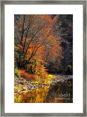 Elk River Autumn Framed Print by Thomas R Fletcher