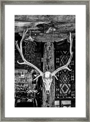 Elk Skull In Black And White Framed Print