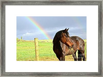 Ella And The Rainbows Framed Print