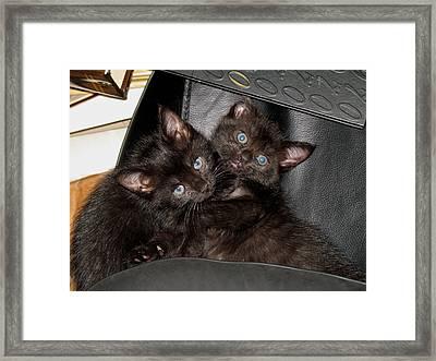 Ellen And Elvira Framed Print